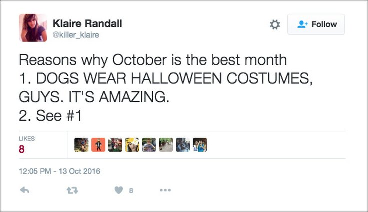 25 Tweets About Pets And Halloween That Are Relatable AF