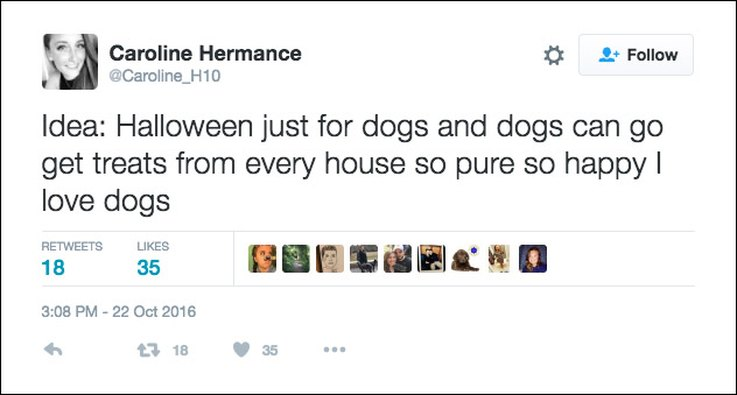 25-tweets-about-pets-and-halloween-that-are-relatable-af