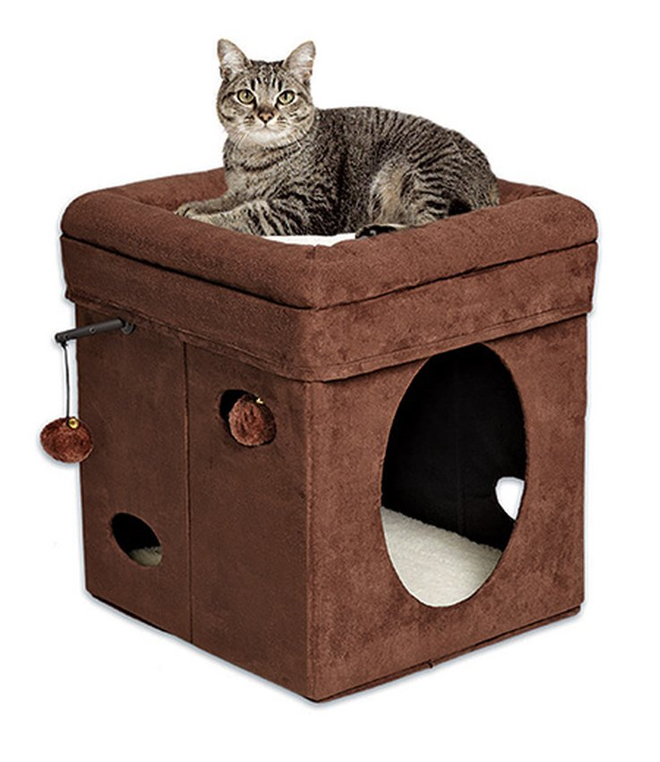 top-cat-furniture-that-wont-break-the-bank