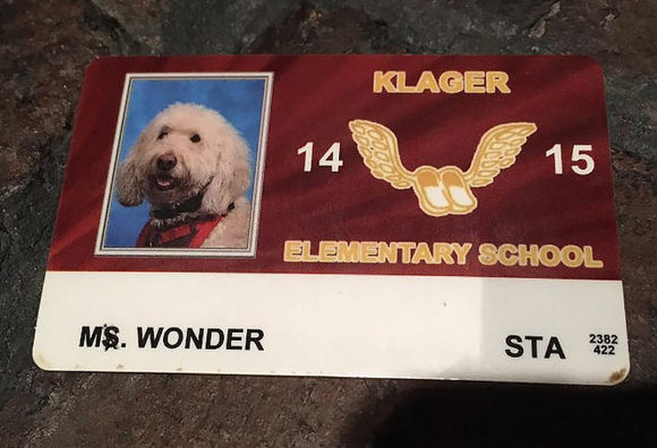 this-girl-and-her-service-dog-are-headed-to-the-supreme-court-for-an-important-reason