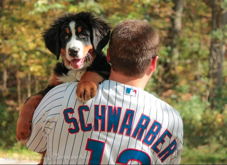 Dogs for Cubs on Instagram
