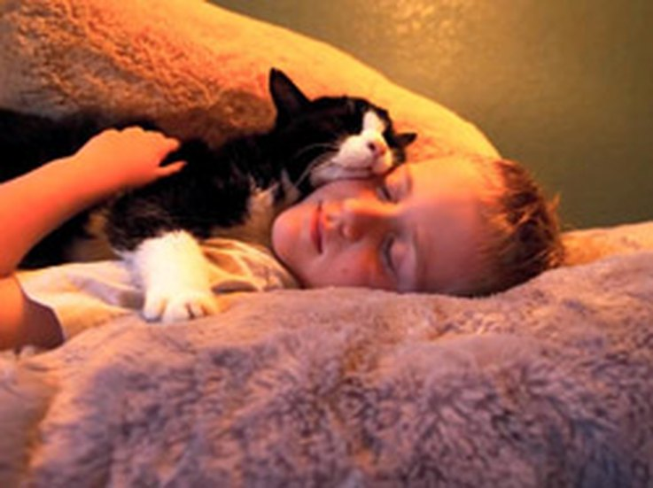12-newly-adopted-senior-cats-that-will-melt-your-freaking-heart