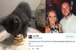This Guy Went Viral for Making His Girlfriend's Cat Mini-Pancakes